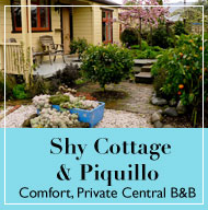 SHY COTTAGE accommodation Greytown